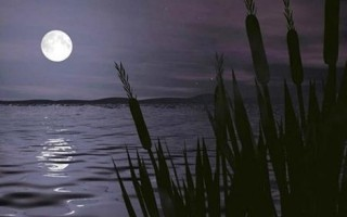 Ay'a övgü